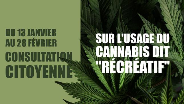 Consultation citoyenne cannabis